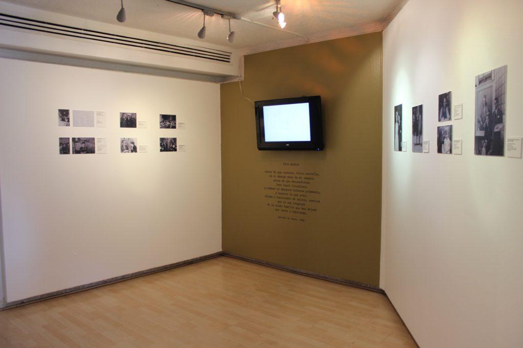 Galeria Leo A1