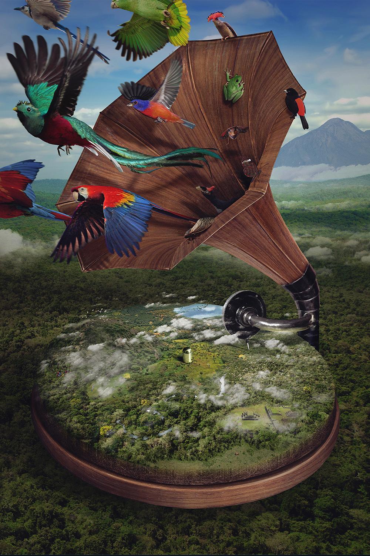 Selva (de la serie Sinfonía de la naturaleza)-1